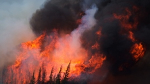Six weeks after it roared into Fort McMurray, the huge fire in northern Alberta is now classified as 'being held' for the first time. (Darryl Dyck/Bloomberg)